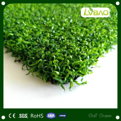 10mm Artificial Grass Widely Used Nice Price Free Sample